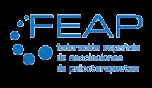 logo vector feap