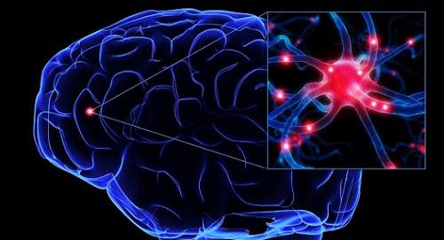 Active Brain2