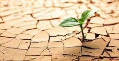resiliencia 3