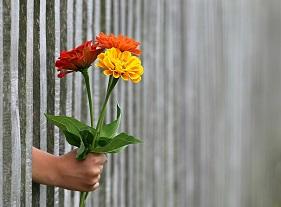 generosidad flores